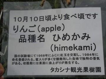 Takashina10